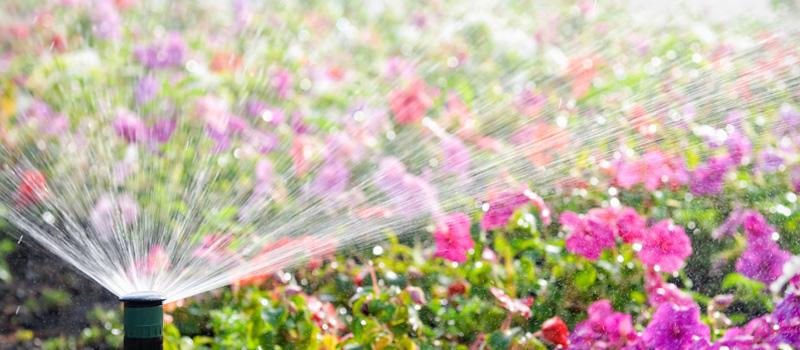 Spring Start-ups irrigation service